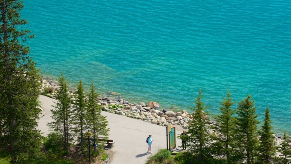 Banff National Park which includes a lake or waterhole