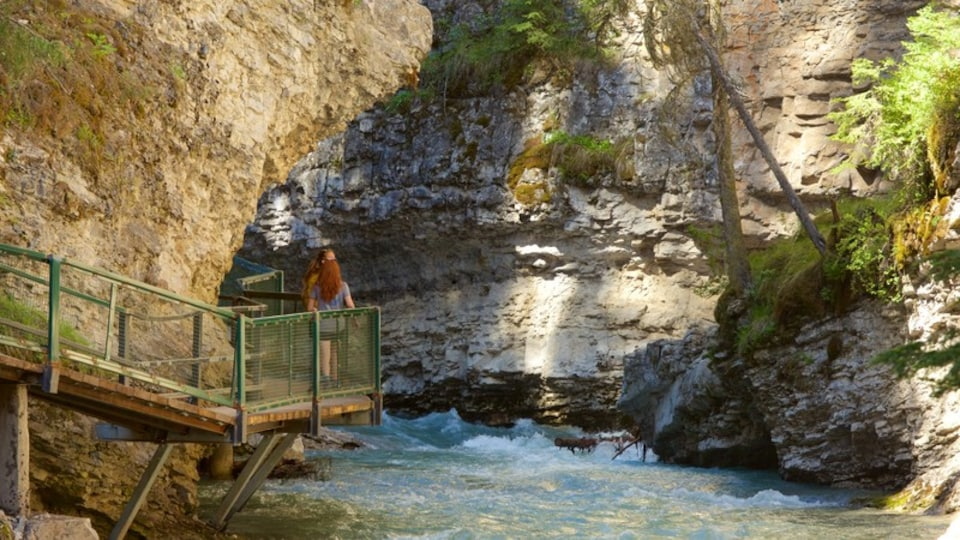 Johnston Canyon featuring a gorge or canyon and a river or creek as well as a couple