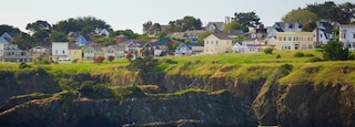 Mendocino featuring rocky coastline, a coastal town and general coastal views