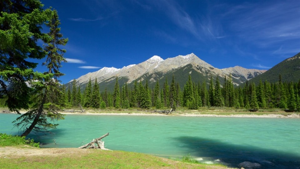 Kootenay National Park showing mountains and a lake or waterhole