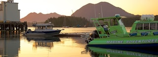 Tofino showing a bay or harbor and a sunset