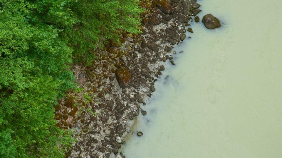 Hope featuring a pebble beach