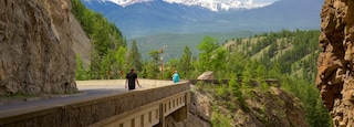 Kootenay National Park showing tranquil scenes as well as an individual male