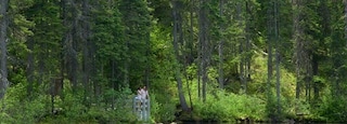 Kootenay National Park featuring a lake or waterhole and forest scenes as well as a couple