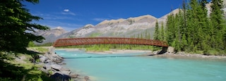 Kootenay National Park showing tranquil scenes, a river or creek and a bridge