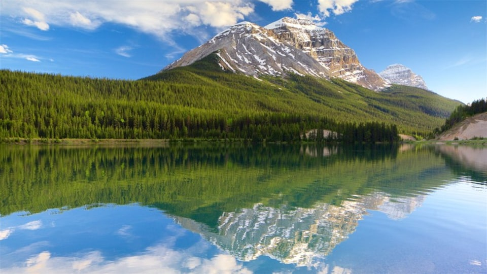 Yoho National Park showing tranquil scenes, a river or creek and mountains