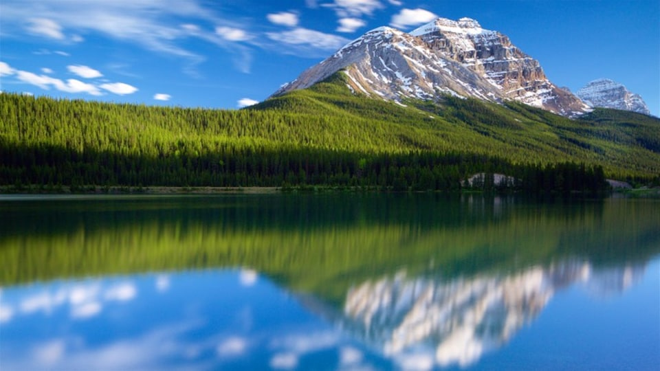 Yoho National Park which includes tranquil scenes, a river or creek and mountains