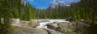 Yoho National Park featuring a river or creek