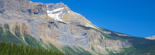 Yoho National Park featuring tranquil scenes, a lake or waterhole and mountains