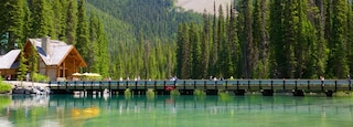 Yoho National Park showing a lake or waterhole, tranquil scenes and a small town or village