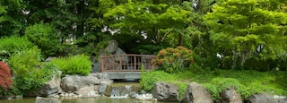 Kasugai Gardens showing wildflowers, a pond and a park