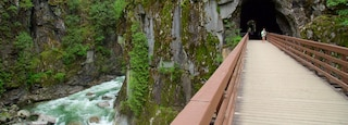 Vancouver Coast showing rapids, a gorge or canyon and a bridge