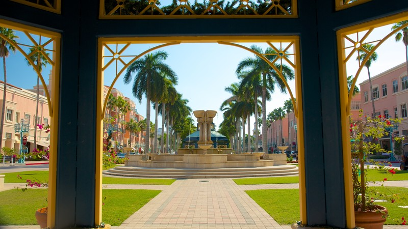 Mizner Park showing a city, a garden and tropical scenes