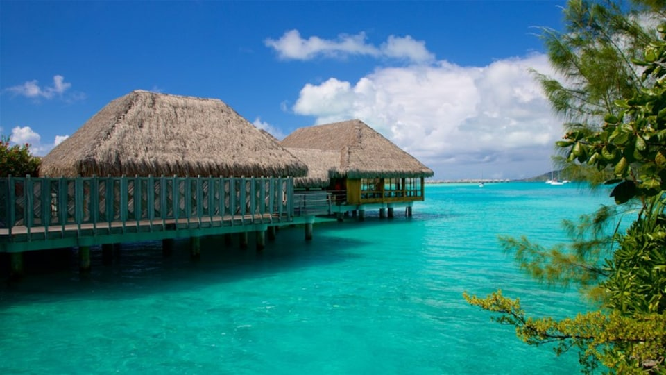 Bora Bora which includes tropical scenes and general coastal views
