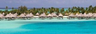 Bora Bora featuring tropical scenes and general coastal views