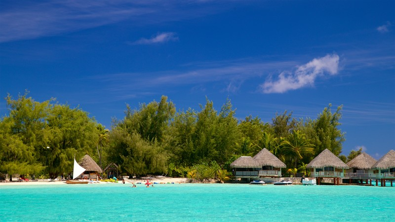 Top 10 bora bora hotels in bora bora 201 cheap hotels for What to buy in bora bora
