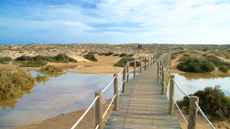 Ilha da Culatra Beach
