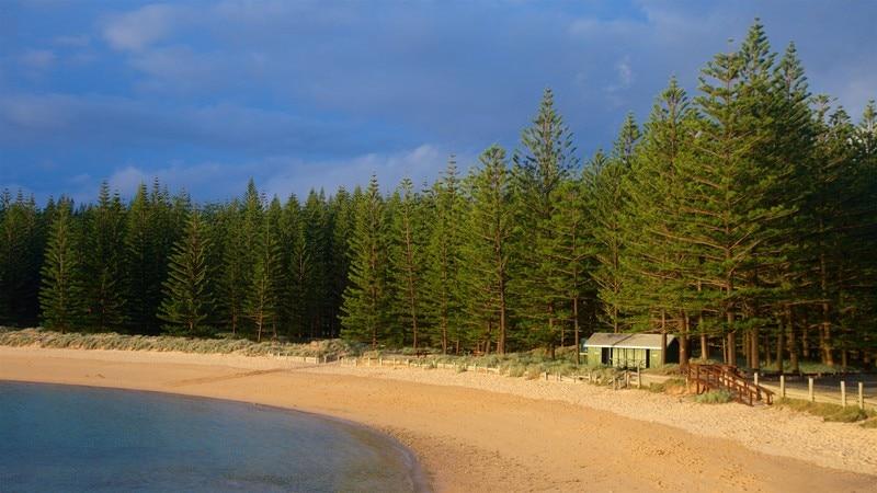 Emily Bay Beach
