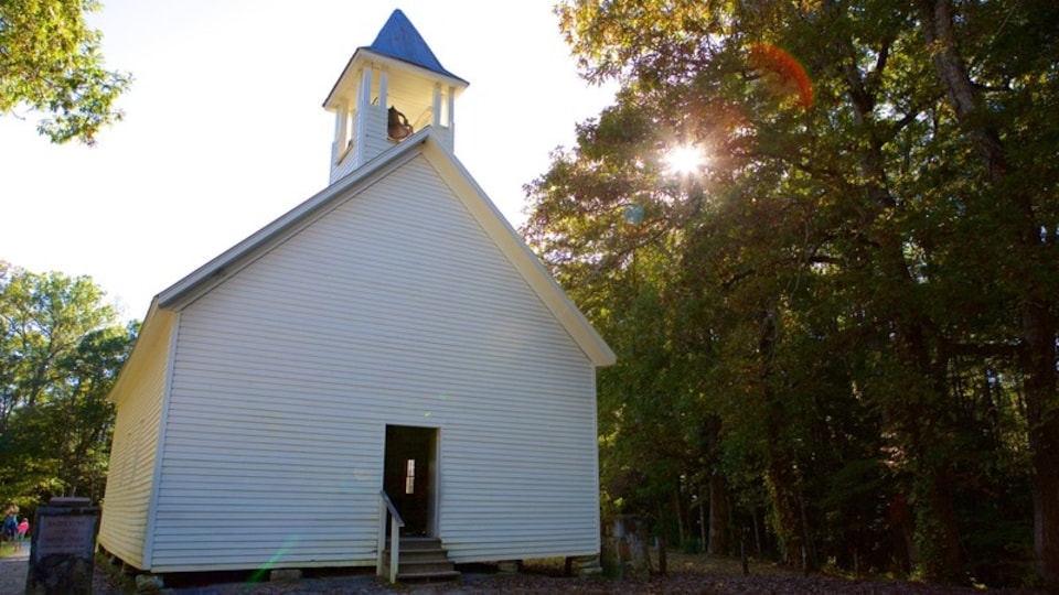 Cades Cove showing a park and a church or cathedral