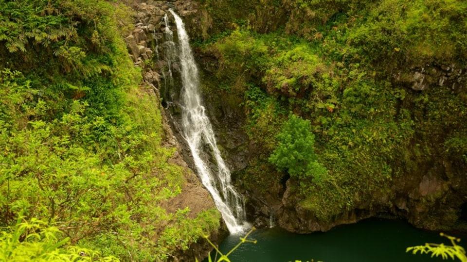 Maui Island showing a cascade and a lake or waterhole