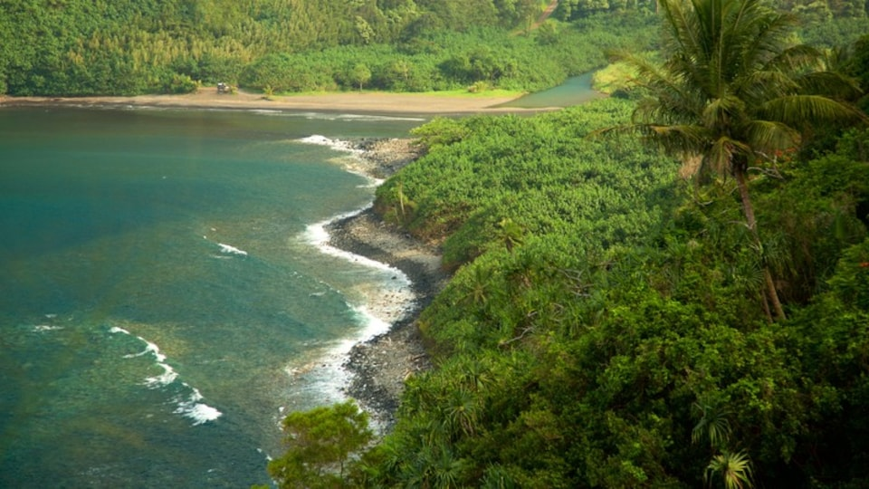 Maui Island showing forests and general coastal views