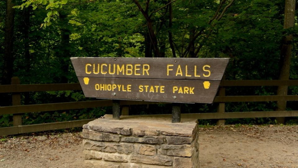 Ohiopyle State Park which includes signage and forest scenes