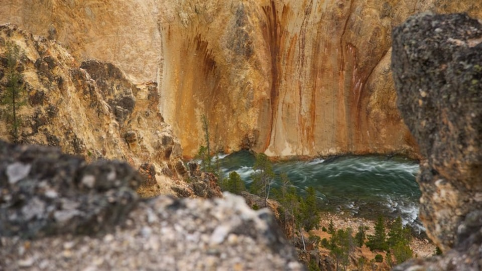 Grand Canyon of Yellowstone which includes a river or creek and a gorge or canyon