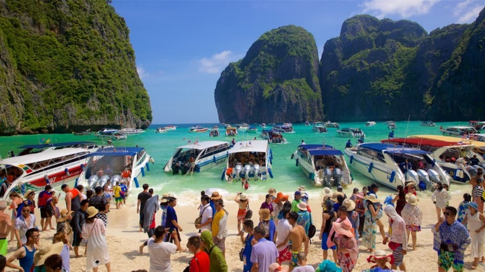 Maya Bay featuring boating, tropical scenes and a beach