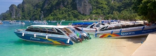 Ko Phi Phi showing a bay or harbor, mountains and tropical scenes