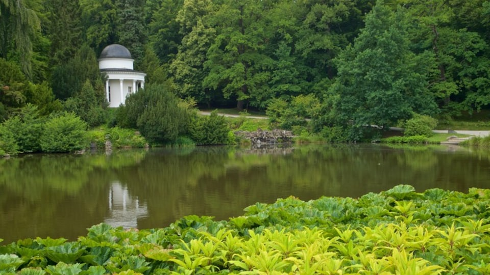 Bergpark Wilhelmshoehe showing a park and a pond