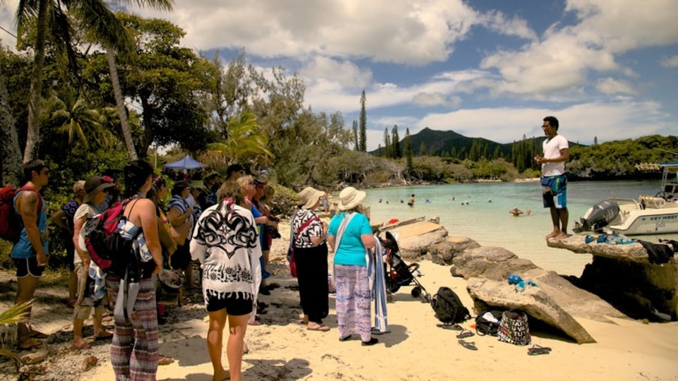New Caledonia showing tropical scenes, a sandy beach and general coastal views