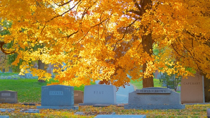 Crown Hill Cemetery featuring a cemetery, a memorial and fall colors