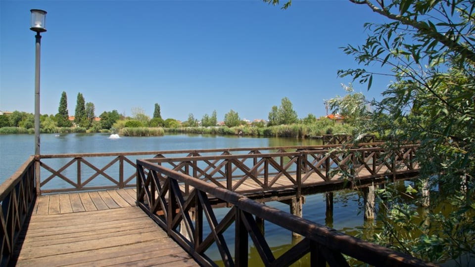 Parco del Gelso which includes a lake or waterhole and a bridge