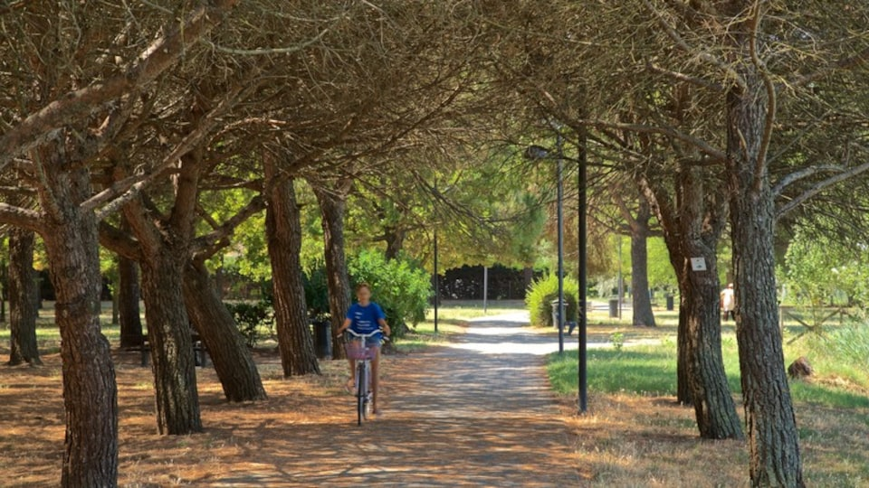 Parco del Gelso showing a park and cycling