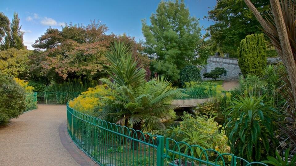 Candie Gardens which includes a garden