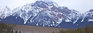 Jasper showing mountains and snow