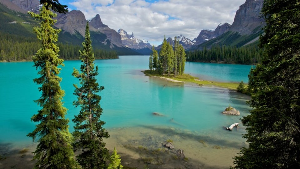 Maligne Lake which includes a lake or waterhole and landscape views
