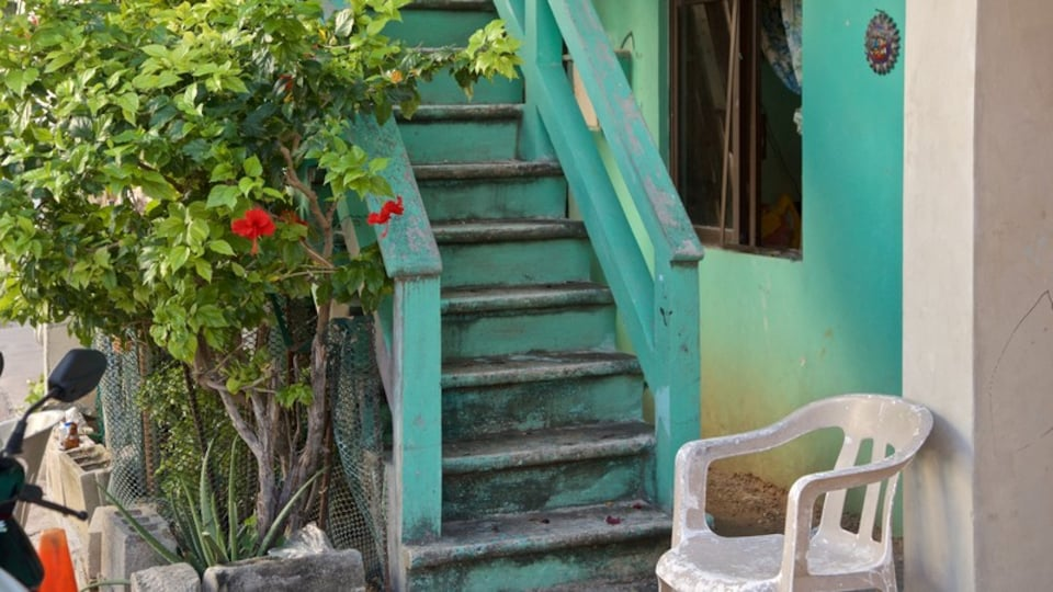 Isla Mujeres which includes a house and wildflowers