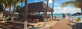 Norte Beach featuring tropical scenes, general coastal views and a beach bar
