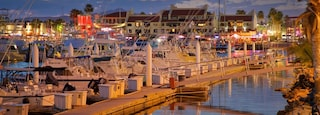 Marina which includes a sunset and a bay or harbor