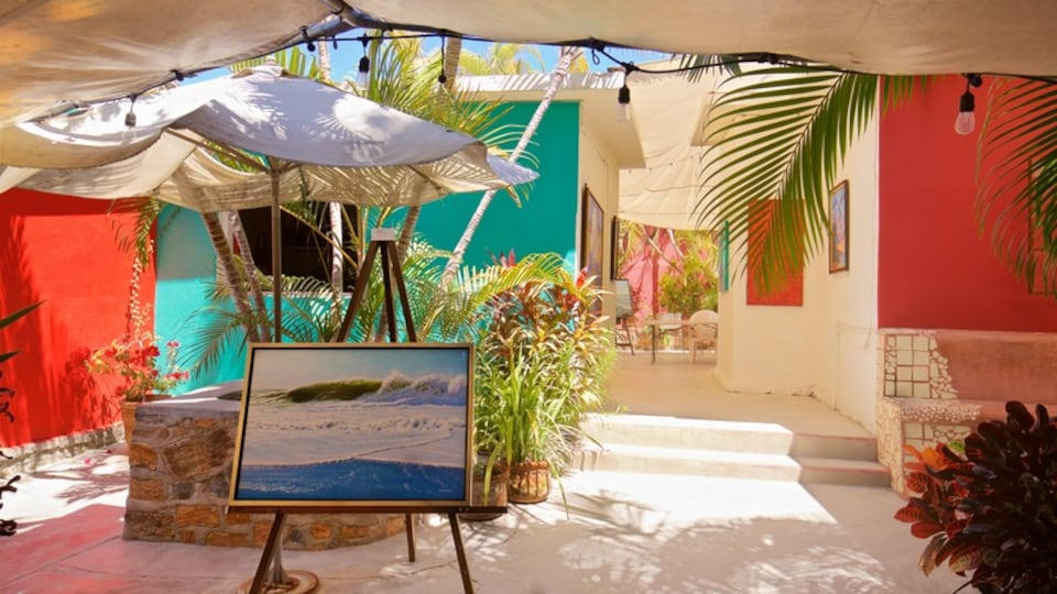 Logan Gallery showing art and interior views