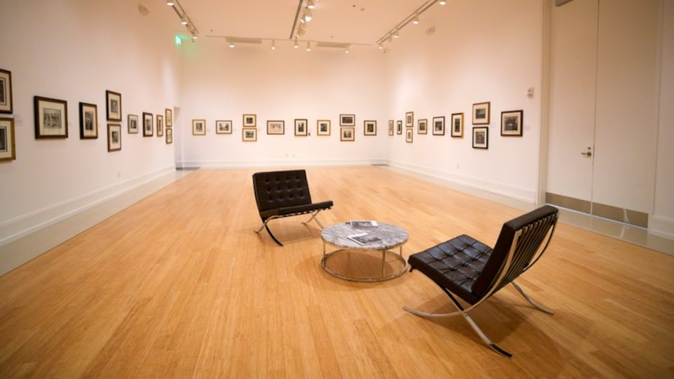Vero Beach Museum of Art showing interior views and art