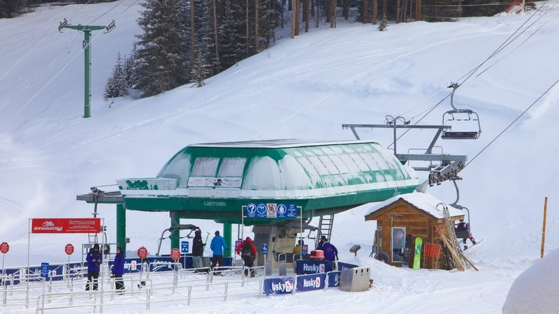 Lake Louise Mountain Resort which includes snow skiing and snow