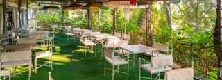 Giardini la Mortella featuring cafe scenes