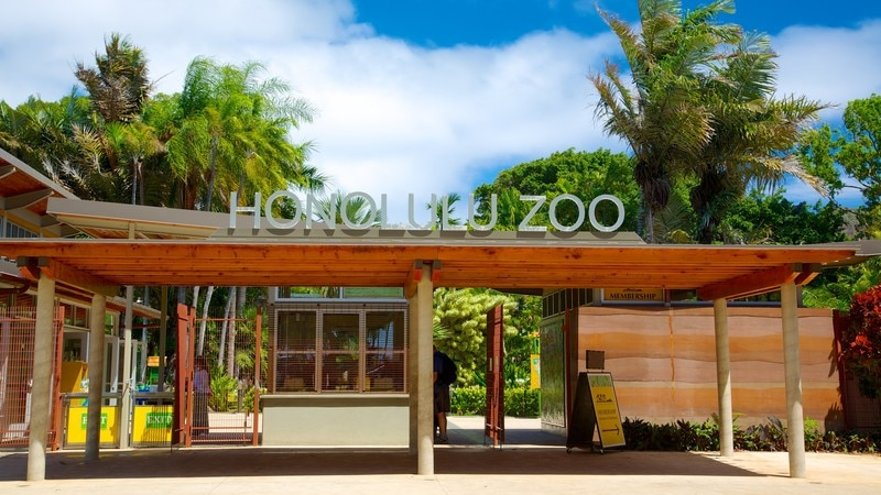 Honolulu Zoo which includes signage and zoo animals