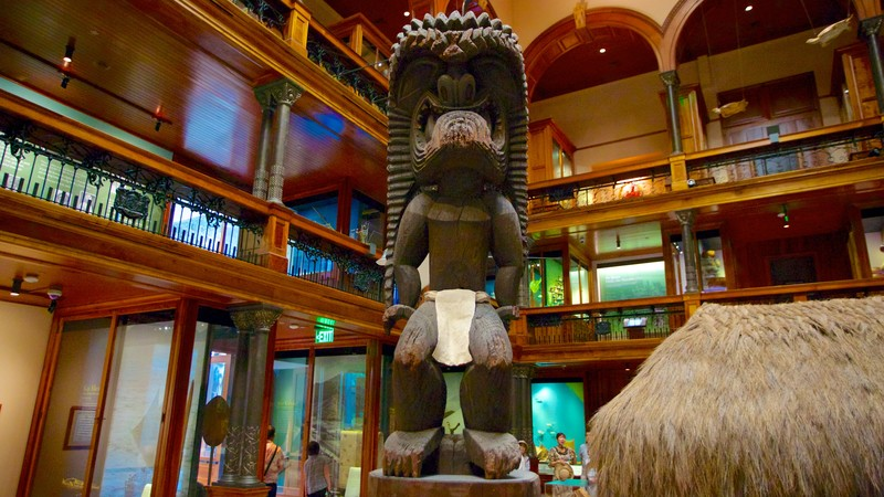 Bishop Museum showing interior views and a statue or sculpture