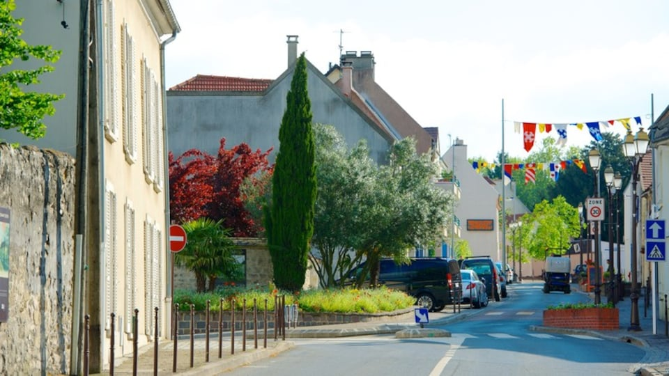 Roissy-en-France showing street scenes and a small town or village