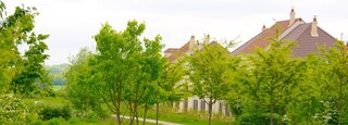 Magny-le-Hongre featuring a park