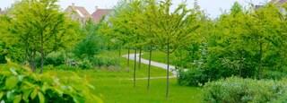 Magny-le-Hongre which includes a garden