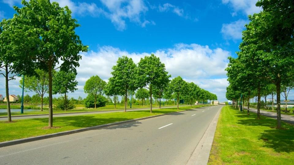Marne-la-Vallee featuring skyline and street scenes